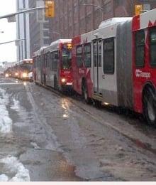 mi-ottawa-buses