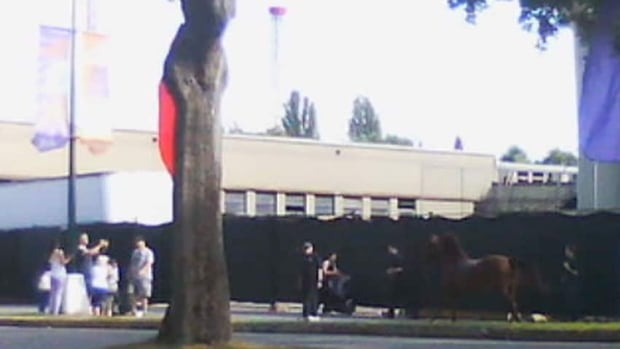 In August, a horse that wandered out of the livestock barn at the Pacific National Exhibition bolted when a trainer tried to corral it. The horse ran into people along Miller Drive in Hastings Park. Two people were sent to hospital.