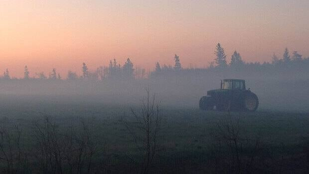 A tractor rolls across a smokey field as the sun rises following a forest fire at Covehead.