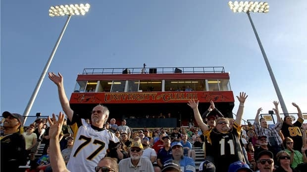 Hamilton Tiger-Cats fans cheer in their new tempoaray home at Alumni Stadium in Guelph as CFL pre-season action between the Ti-Cats and the Winnipeg Blue Bombers begins in Guelph, Ont., on June 20, 2013.