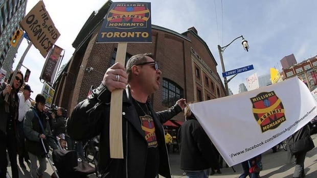 Farmers protest genetically modified alfalfa outside the St. Lawrence Market in Toronto on Tuesday. Dozens of similar protests were held across Canada.
