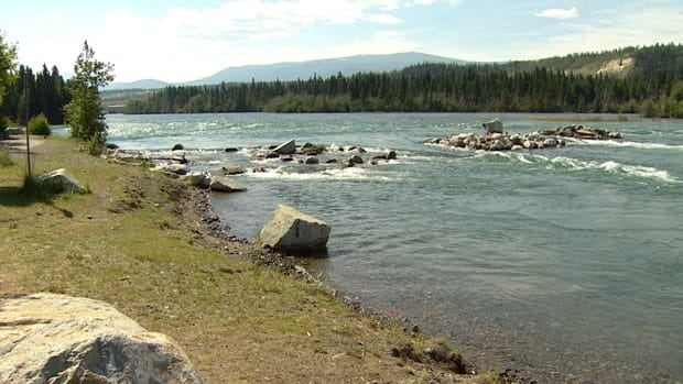 A Whitehorse man drowned in the Yukon River Thursday evening trying to rescue his dog.