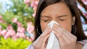 hi-bc-130325-allergy-pollen-4col