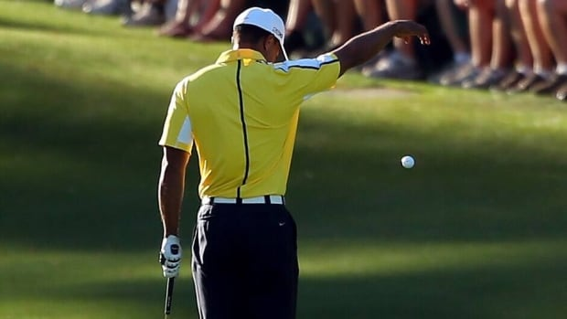 The television viewer who reported the illegal drop Tiger Woods took during the Masters was more than just a golf fan, according to reports.