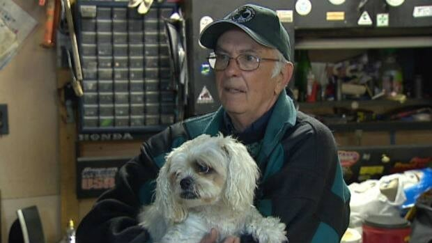 Charlie Greene, 70, and his dog Patch, 15, who were driven out of their basement apartment in Mount Pearl after a sewer back-up, are now staying in a neighbour's shed.