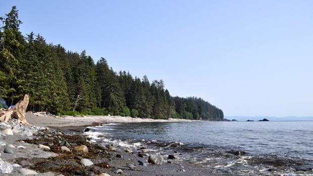 Sombrio Beachin Juan de Fuca Provincial Park.