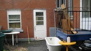 852-dorner-backyard-4col