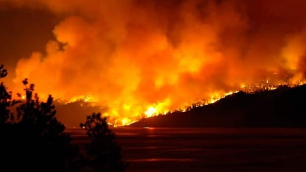 A report warns B.C. could face many more fires like the devastating  Okanagan Mountain Park forest fire in 2003.