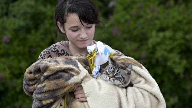 Krystal Lelond of Black Diamond, Alta., clutches her cat Pipi after being evacuated from her home on Thursday after the Sheep River overflowed its banks.