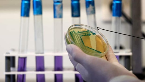 Genetically modified microbes are already used to manufacture many pharmaceuticals, such as insulin.