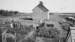 mi-lipton-school-1918