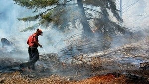 hi-bc-130716-wild-forest-fire-fighter-4col