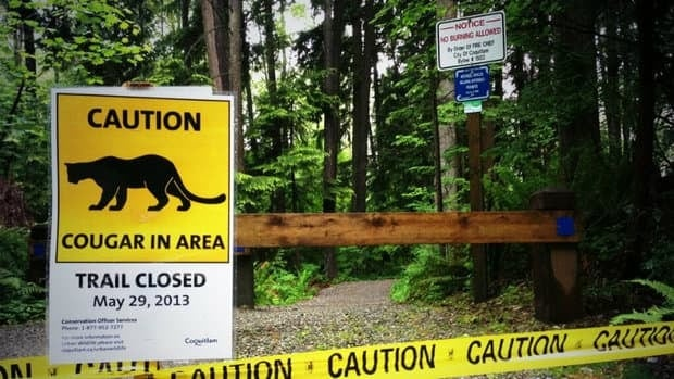 People are being warned to stay out of Coquitlam River Park because of cougar sightings.