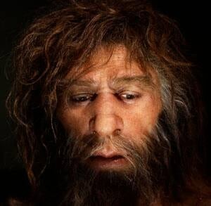 sm-300-neandertal-rtr2b3e5