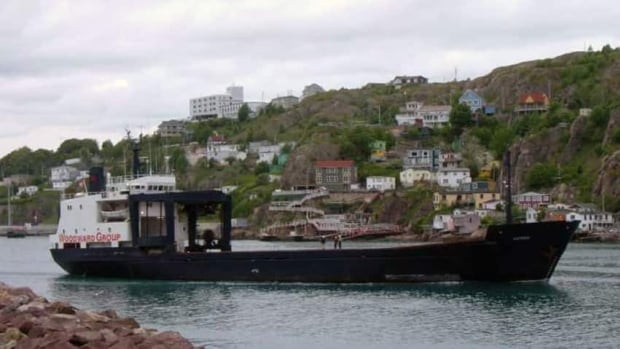 The crane aboard the MV Astron, seen in this file image taken in St. John's, is out of service.