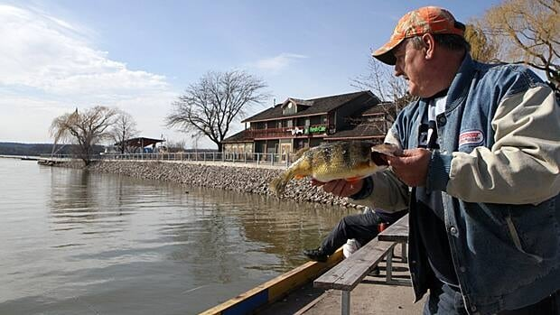 Tom Raczynski of Hamilton shows a perch he caught on Pier 8 on Wednesday. The city is taking over operation of the land and plans to encourage residential and commercial development.