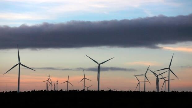 Spanish wind farms generated more electricity in January than any other power source. REUTERS/Sergio Perez