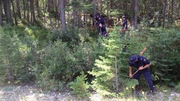 A police search was conducted in August after some bones, possibly human, were found near Cascade Mountain near Banff.