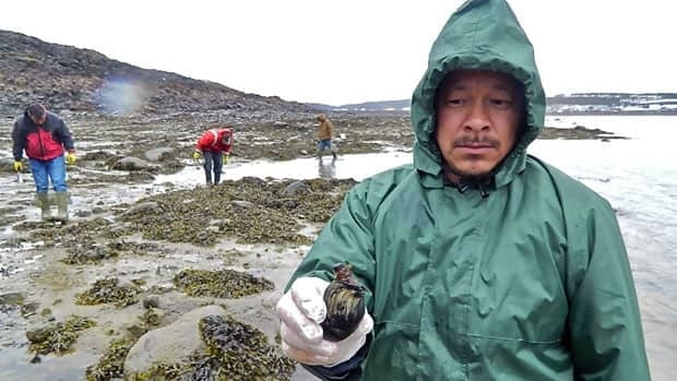 Research assistant David Alexander holds up a clam, as he helps students collect samples just outside Iqaluit for a study on pollution in the Northwest Passage.