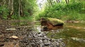 pe-mi-winter-river-stream