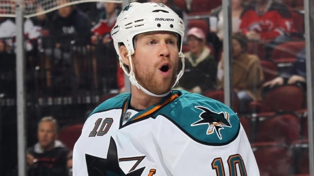 Brad Winchester has played in 390 NHL games with Edmonton, Dallas, St. Louis, Anaheim and San Jose.