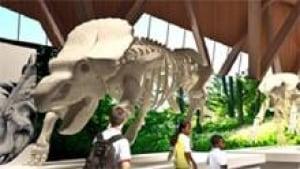 mi-alberta-dinosaur-museum