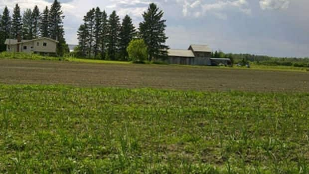 Rural farm land in Greater Sudbury's outlying areas