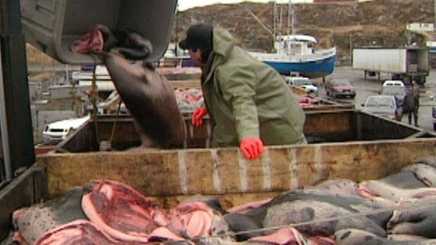 The federal government says it will continue to pursue a trade challenge to an EU ban on seal products, such as these pelts being unloaded on a wharf.