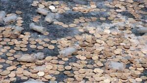 si-brinks-coins-300