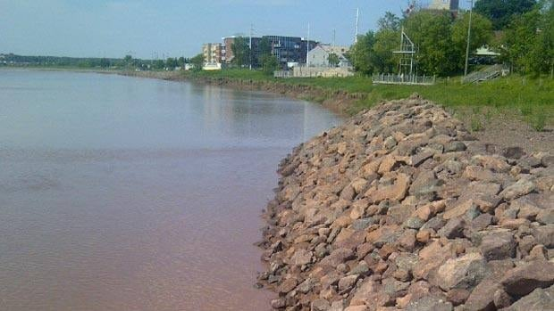Moncton councillors say they are opposed to covering about 300 metres of riverbank with protective rocks, also known as rip-rap, to prevent erosion.