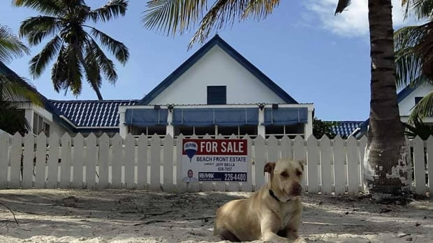 A dog sits outside of the home of anti-virus software pioneer John McAfee in San Pedro Wednesday. Belize police want to question McAfee, 67, about the death of his neighbor and fellow U.S. citizen, Gregory Viant Faull, 52, with whom McAfee had quarreled. Belize's prime minister on Wednesday urged McAfee to help the country's police with a murder inquiry, calling McAfee bonkers for recent media statements.