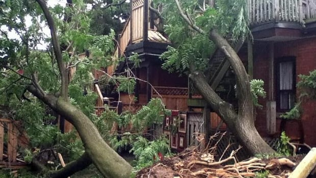 Friday's storm toppled trees onto residences in the area of Stinson Street and Erie Avenue.