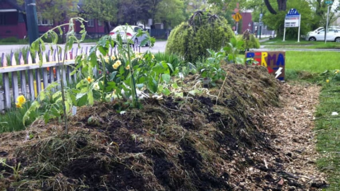 Chat replay your gardening questions answered calgary for Gardening questionnaire