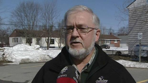 Dave Cheeks was at the arena in La Scie on Sunday to see his son's hockey game. Concerned for the Gander and Lewisporte players' safety, he intervened near the end of the third period, and asked the referee to call the game.