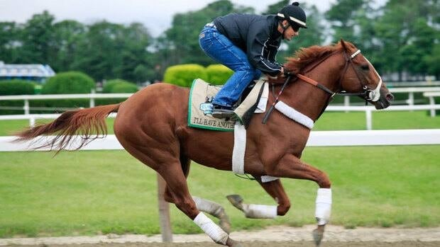 Jonny Garcia gallops I'll Have Another, Monday, June 4, 2012 at Belmont Park in Elmont, N.Y.