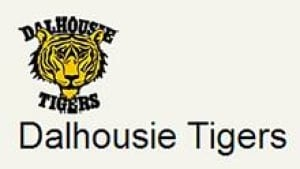 ns-hi-dal-tigers-852-3col