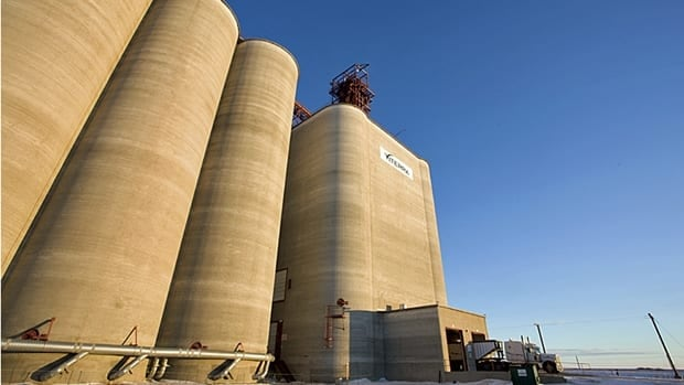 Viterra earned record quarterly adjusted profits of $185 million, up 43 per cent from a year earlier.