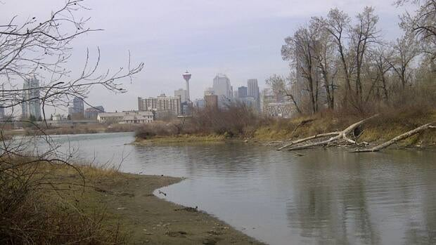 Officials revealed plans on Wednesday to redevelop St. Patrick's Island east of downtown Calgary.