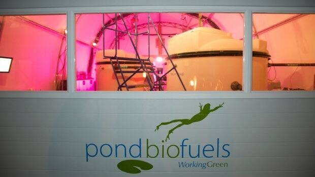 Pond Biofuels industrial installation operating at night. Algae is growing on raw smokestack emissions.