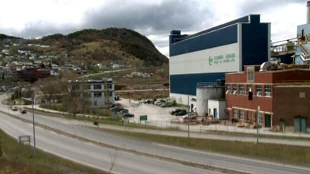 Montreal-based Kruger Inc., which owns Corner Brook Pulp and Paper, says it has been losing money consistently at the newsprint mill.