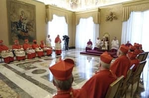 si-300-pope-consistory-rtr3dmsv