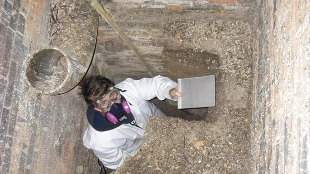 A researcher takes a sample from the two-metre chimney swift guano deposit inside a chimney at Ontario's Queen's University.