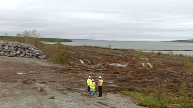 The former owners of the greenfield site on the Sydney waterfront say there are concerns about the material dredged from the harbour.