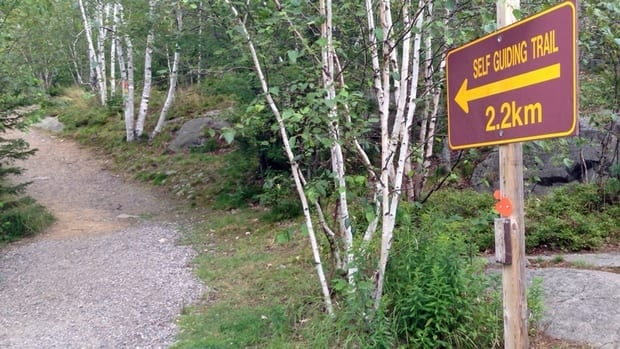 Parts of the trails at Sudbury's Lake Laurentian Conservation Area will be given some TLC by trail care crews this weekend.