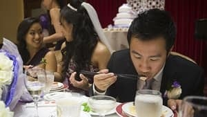 mi-shark-fin-wedding
