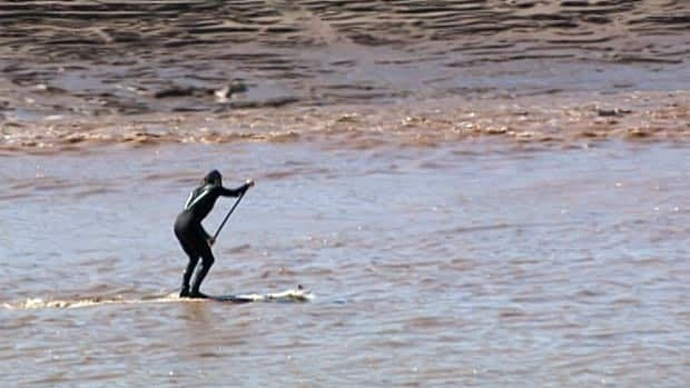 Four surfers will be in Moncton this week to ride the Petitcodiac River's tidal bore.