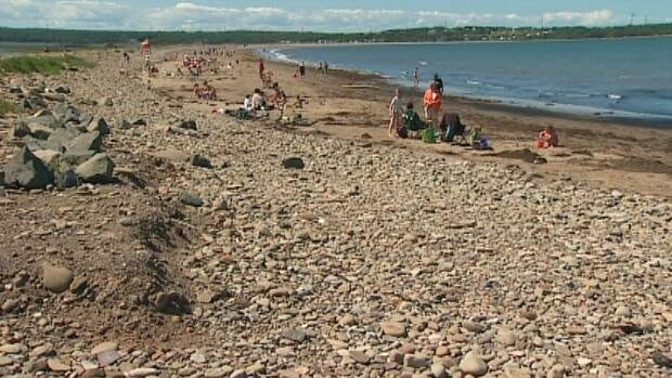 The Department of Natural Resources recently presented its plan to restructure Dominion Beach.