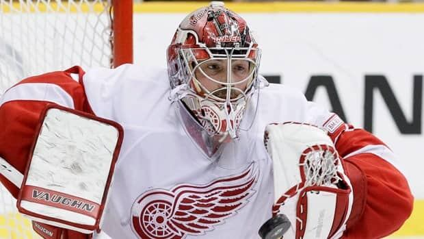 Joey MacDonald, shown in a 2011-12 game with Detroit, gives Calgary another NHL-tested goalie.