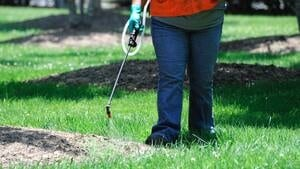 hi-lawn-pesticide-istock-852-4col