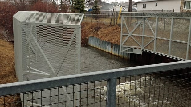 A section of Junction Creek in Sudbury's Flour Mill area swells with water as the city is pelted with rain. Currently, water levels flowing through the city's sewer system are three times more than its capacity, city officials say.